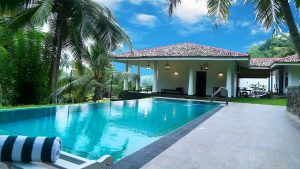 house with the pool and palm trees